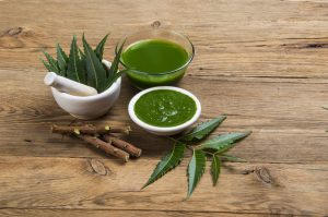 Read more about the article Neem – A Medicinal Plant – Benefits & Uses