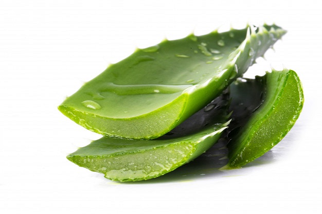 Aloe vera – Benefits, Uses, and Side Effects of Aloe vera